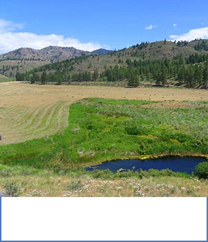 blue-sky-real-estate-winthrop-mazama-twisp-carlton-real-estate-carlton-and-methow-valley-info